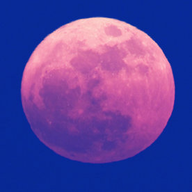 It S Not Too Late To See The Pink Moon In Action